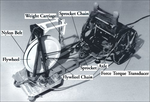 Influence Of Training On Biomechanics Of Wheelchair Propulsion