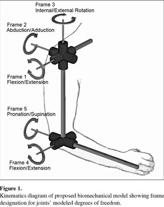 Kinematics Diagram Of Proposed Biomechanical Model Showing Frame Designation For Joints Modeled Degrees