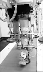(PDF) Soleus H-Reflex Gain, Threshold, and Amplitude as ...