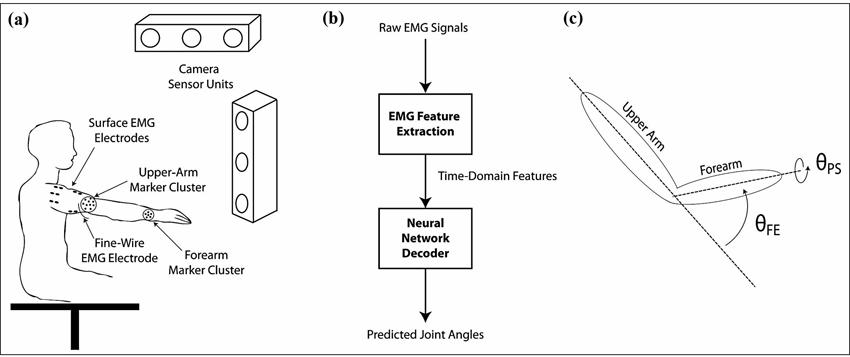 electromyogram based neural network control of. Black Bedroom Furniture Sets. Home Design Ideas