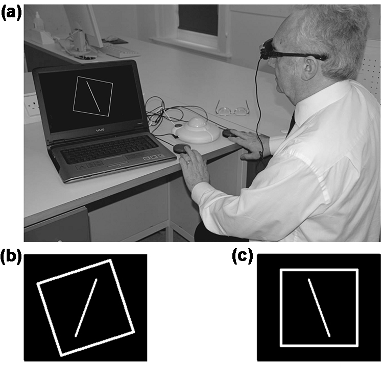 Eyeglass Frame Tester : Subjective visual vertical perception and sense of smell ...